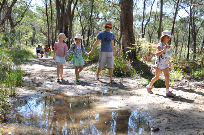 Primary bushwalk